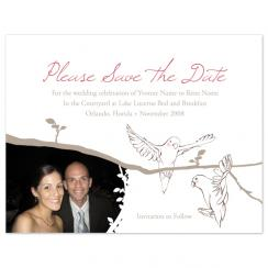 A New Branch of Love Save the Date Cards