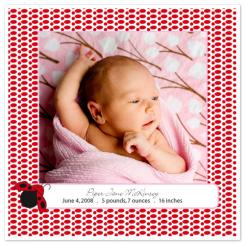 Ladybugs & Spots Birth Announcements