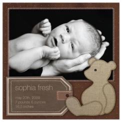 Bear Book Birth Announcements