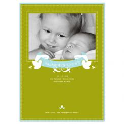 Birds + Banner Birth Announcements