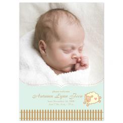 Little Sheep Birth Announcements