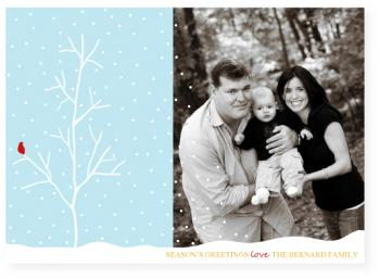 winter birch Holiday Photo Cards