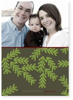 pine needles Holiday Photo Cards