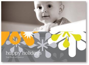 Snowglyphic Landscape Holiday Photo Cards