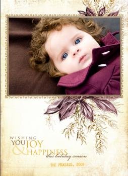 Warm Berries Holiday Photo Cards