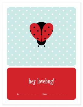 lady love bug