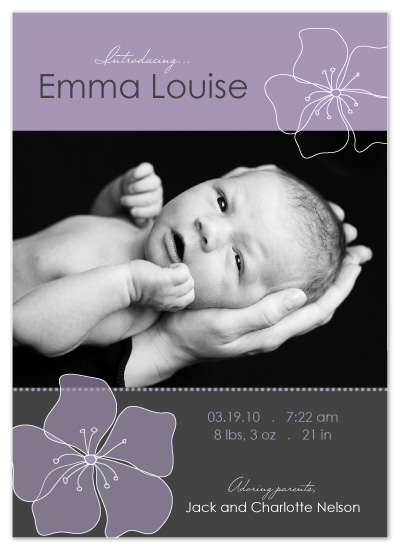 birth announcements - Sweet Lavender by Bugaboo Announcements