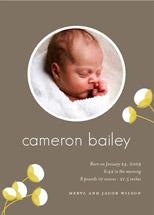 birth announcements - cotton by Oscar & Emma