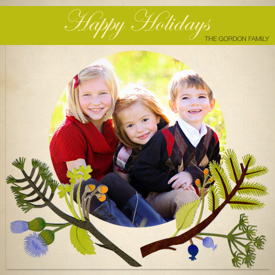holiday photo cards - Holiday Branches by Jessica Rae Gordon