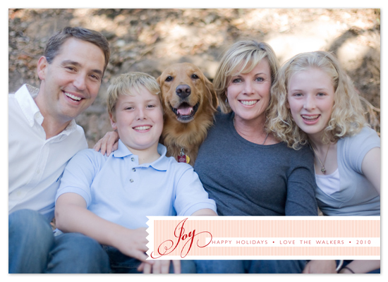holiday photo cards - Joy to You! by b.wise papers