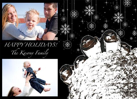 holiday photo cards - Birds by Danielle  Kasony