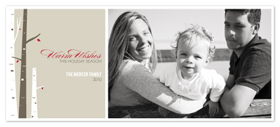 holiday photo cards - Warm Wishes by Lina Goldberg