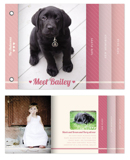 minibook cards - Puppy Love by Bethany Anderson