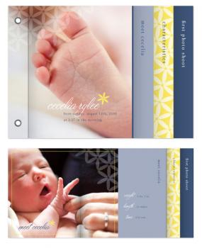 subtle joy birth announcement minibook: Cecelia Rylee Minibook Cards