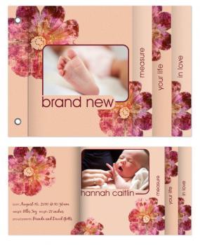 Brand New Minibook Cards