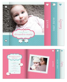 sweet baby love Minibook Cards