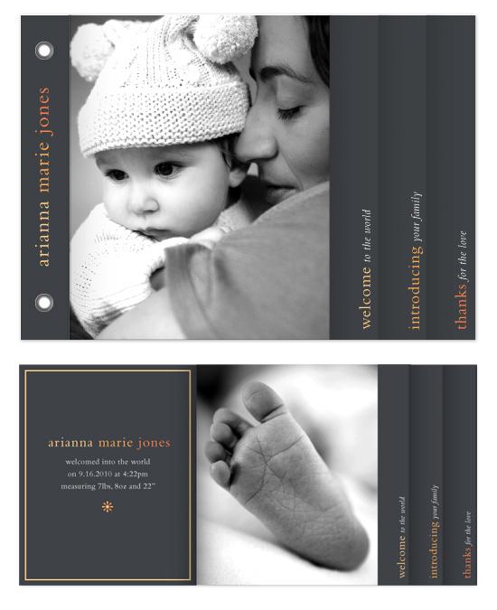 minibook cards - Gallery Baby Minibook by lauren mummé
