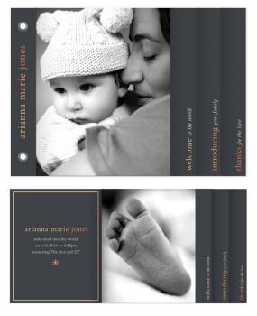Gallery Baby Minibook Minibook Cards