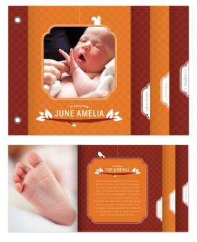 Woodland Baby Minibook Cards
