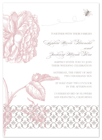 wedding invitations - botanical by Sweet Sonoma Company