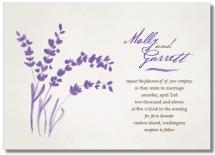 Soft Lavender by Tickled Ink Paperie