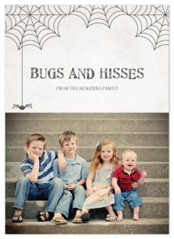 Halloween Bugs and Hisses Cards