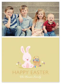 baby bunny Cards