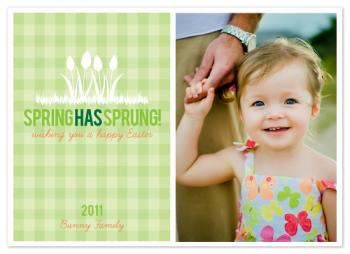 Spring has Sprung Cards