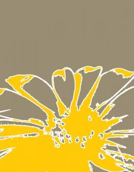 Illustrated Daisy - Yellow/Gray