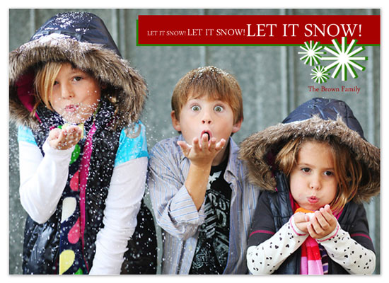 holiday photo cards - Snowflake Holiday by Tenille Jordan