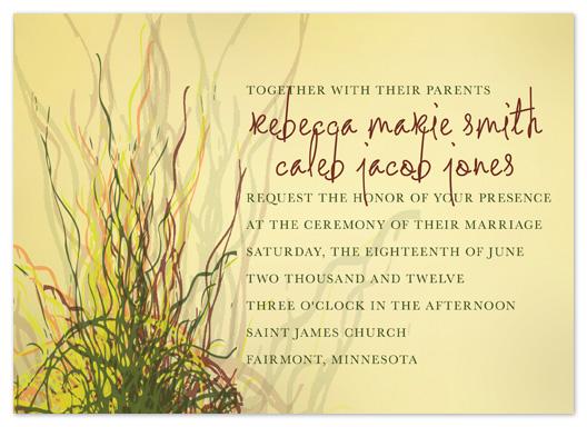 wedding invitations - Prairie Grass Love by Raybo Design
