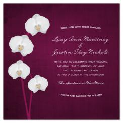 Royal Orchid Wedding Invitations