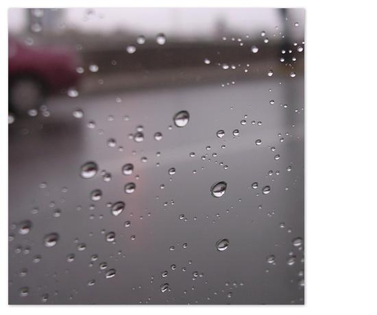 art prints - Rain Drops by Todd Jones