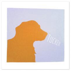 Graphic Dog