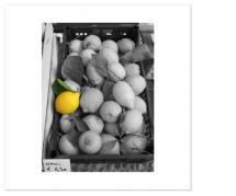 Lemon by Eddie