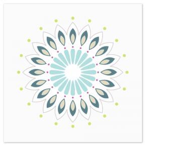 Flower Burst Art Prints