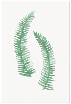 Painted Ferns Art Prints
