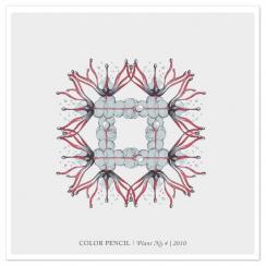Color Pencil | Plant NO.4
