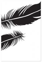 Feather II by Sarah Dohm