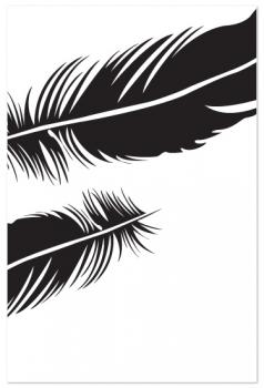 Feather II Art Prints