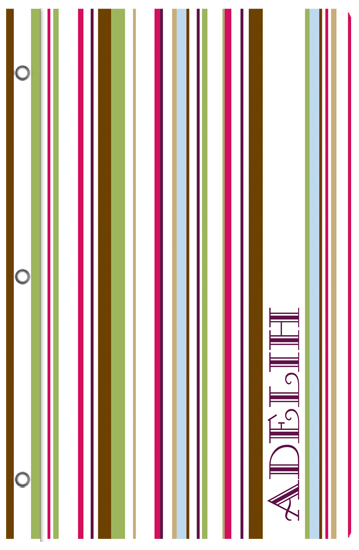 journals - Fresh Stripes by Stephanie Blaskiewicz