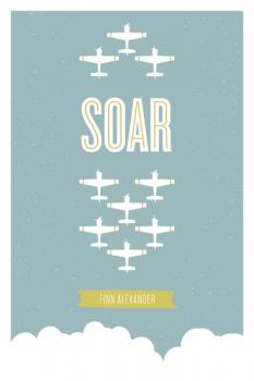 Soar Art Prints