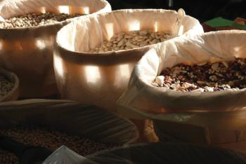 Light Through The Beans Art Prints