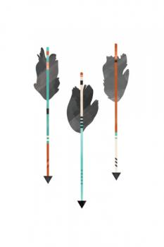 Feathered Arrows Design