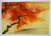 Japanese Maple Tree on... by Cindy Shih