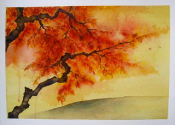 Japanese Maple Tree on a Quiet Hill  Art Prints