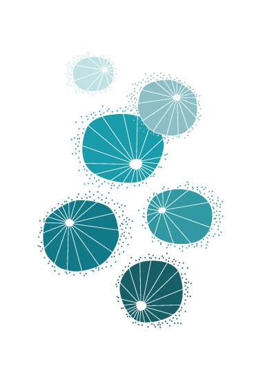 art prints - Urchins by Kayla King