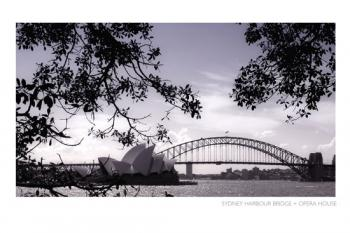 Sydney Harbour Bridge + Opera House Art Prints