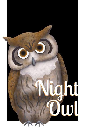 art prints - Night Owl by Maria Boudreaux