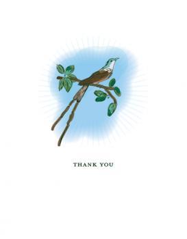 Bird Bird Thanks